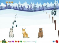 Programy edukacyjne: Ślady nauczą rozpoznawać tropy zwierząt. To trening koncentracji i na zapamiętywanie. Udany prezent dla dziecka