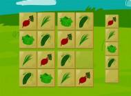 Nowalijki to gry edukacyjne na ćwiczenie pamięci i koncentracji. Takie programy edukacyjne wspaniale spisują się jako prezenty dla dzieci